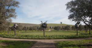 press - launch of the sculpture collection at donum, sonoma, california